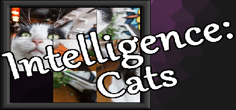 Intelligence: Cats Giveaway