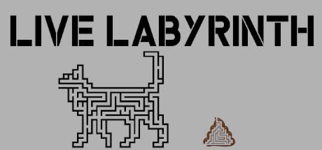 Live Labyrinth Giveaway