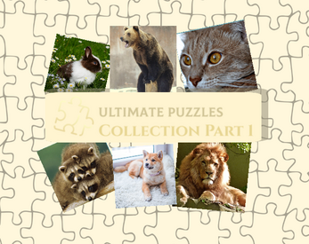 Ultimate Puzzles Collection Giveaway
